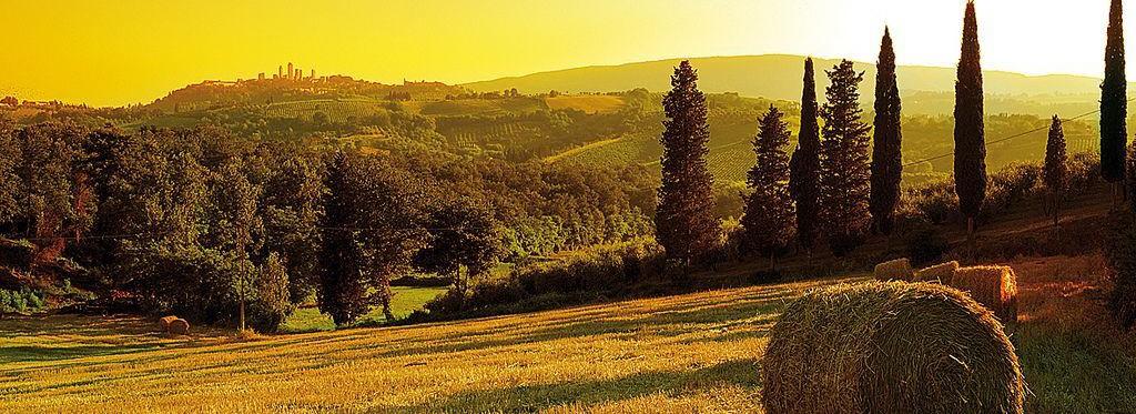 slider_italien_feld-e1431508283821